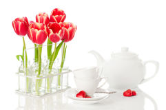 Tea & Tulips Stock Photos