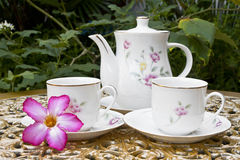 Tea for Two in the Garden with Desert Rose Flower Stock Photo