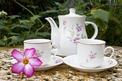 Tea for Two in the Garden with Desert Rose Flower Stock Photo
