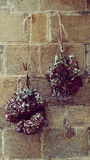 Tea for two Potpourri. Hanging Couple Hortense Bouquet and Stone Wall Royalty Free Stock Image