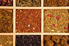 Tea variation. Luxurious and delicious tea collection in wooden box royalty free stock image