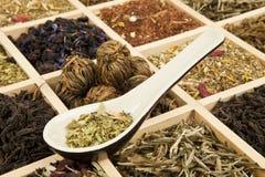Tea variation. Dry tea variation in wooden box with tea spoon Royalty Free Stock Photos