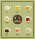 Tea varieties. Brewing time and temperature Royalty Free Stock Image