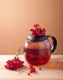 Tea with viburnum berries Stock Photos