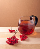 Tea with viburnum berries Stock Image