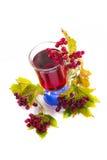 Tea viburnum in a cup Stock Photos
