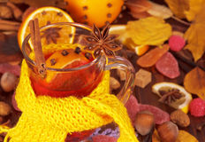 Tea with viburnum and oranges Stock Image
