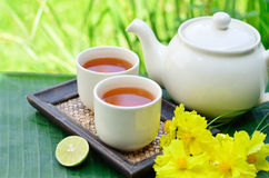 Tea Whit Yellow Flower Stock Photography