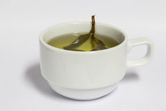 Tea in white cup, healthy drink Stock Photography
