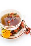 Tea with a wild rose. In white Stock Photos