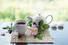 Tea with wild rose Stock Image
