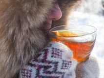 Tea in the winter forest. A pretty woman drinks tea in cold weather. Tea in the winter forest. A pretty woman drinks tea in cold weather royalty free stock images