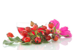 Tea With Rosehip Royalty Free Stock Image