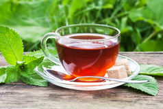 Tea on wooden table. Tea in glass cup and mint on wooden table Royalty Free Stock Photo