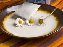 Teabag σε ένα πιάτο στοκ εικόνα με δικαίωμα ελεύθερης χρήσης
