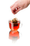 Teabag and cup of hot tea Royalty Free Stock Photos