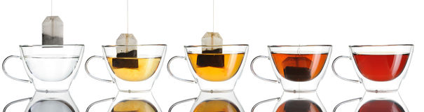 Teabag in the cup set Stock Images
