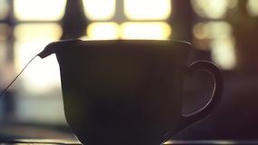 Teabag puts in Cup of teain slowmotion on sunshine. 1920x1080. hd stock footage