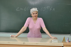 Teacher Royalty Free Stock Photo