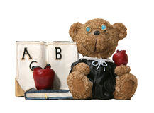 Teacher Bear Royalty Free Stock Photo