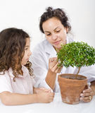 Teacher child plant. Teacher pupil  and small poted tree Royalty Free Stock Photography