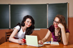 Teacher conducts private lesson with student. Royalty Free Stock Photography