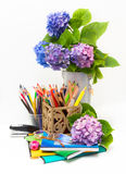 Teacher Day.Bouquet of flowers hydrangeas and scho Royalty Free Stock Photos