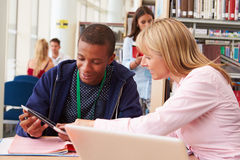 Teacher Helping College Student With Studies In Library Royalty Free Stock Image