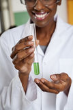 Teacher Holding Chemical Solution In Test Tube Stock Images