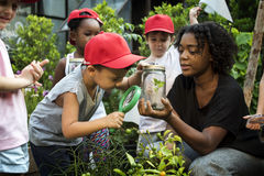 Teacher and kids school learning ecology gardening Stock Images