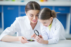 Teacher and little student scientists looking at green plant in soil through magnifier Royalty Free Stock Image