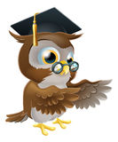 Teacher owl pointing. A cute cartoon wise owl wearing a mortar board professor or teacher's hat and glasses and pointing both wings Stock Image