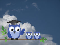 Teacher owl and pupils. Sat on a tree branch against a cloudy blue sky royalty free stock photography