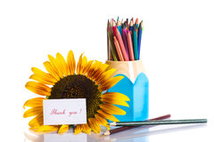 Teacher's Day! Royalty Free Stock Images