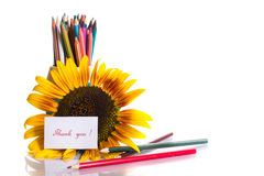 Teacher's Day! Royalty Free Stock Photography