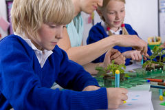 Teacher and school children looking at plant seedlings in classroom Stock Images