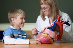 Teacher and schoolboy with heart Royalty Free Stock Photography