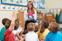 Teacher Showing Flashcard To Elementary School Class Stock Photography