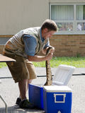 Teacher shows off boa constrictor Stock Image