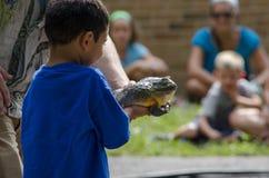 Teacher shows wildlife Royalty Free Stock Image