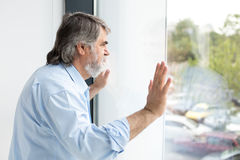 Teacher standing next to a window Royalty Free Stock Photo