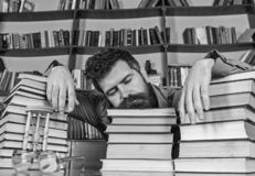 Teacher or student with beard fall asleep on books, defocused. Man on sleeping face lay between piles of books, fall. Asleep while studying in library royalty free stock image