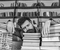 Teacher or student with beard fall asleep on books, defocused. Overstudied concept. Man on sleeping face lay between royalty free stock image
