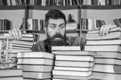 Teacher or student with beard sits at table with books, defocused. Man on shocked face between piles of books, while. Studying in library, bookshelves on royalty free stock photography