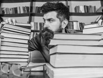 Teacher or student with beard sits at table with glasses, defocused. Bibliophile concept. Man on strict face between. Piles of books, while studying in library royalty free stock photos