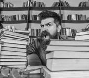 Teacher or student with beard sits at table with glasses, defocused. Mad scientist concept. Man on shouting face between. Piles of books, while studying in stock images
