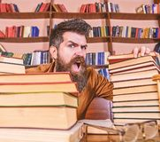 Teacher or student with beard sits at table with glasses, defocused. Mad scientist concept. Man on shouting face between. Piles of books, while studying in stock photography