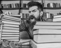 Teacher or student with beard sits at table with glasses, defocused. Man on shouting face between piles of books, while. Studying in library, bookshelves on royalty free stock photos