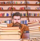 Teacher or student with beard sits at table with glasses, defocused. Man on strict face between piles of books, while. Studying in library, bookshelves on stock photo