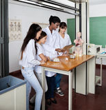 Teacher With Students Using Digital Tablet In Royalty Free Stock Image